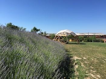 Un ambiente Ideal para elaborar Alimentos Ecológicos: Mas Montserrat, la sede de Vegetalia